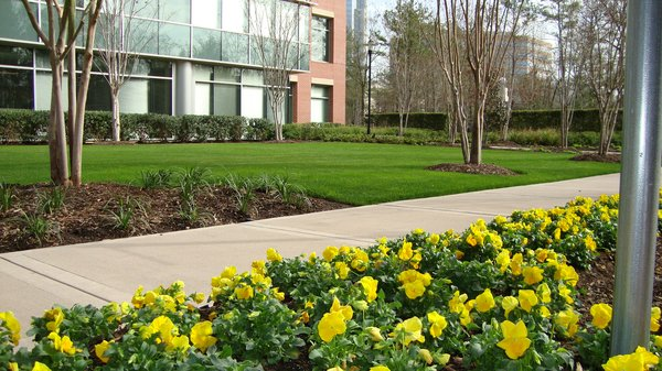 Commercial landscaping all seasons lawn care for Commercial landscaping services